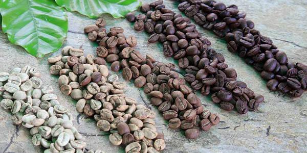 Kaffebønner ristet